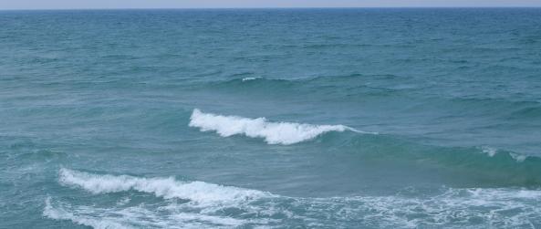 חוף הכרמל