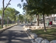 גן האם בחיפה