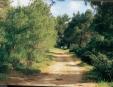 פארק הכרמל